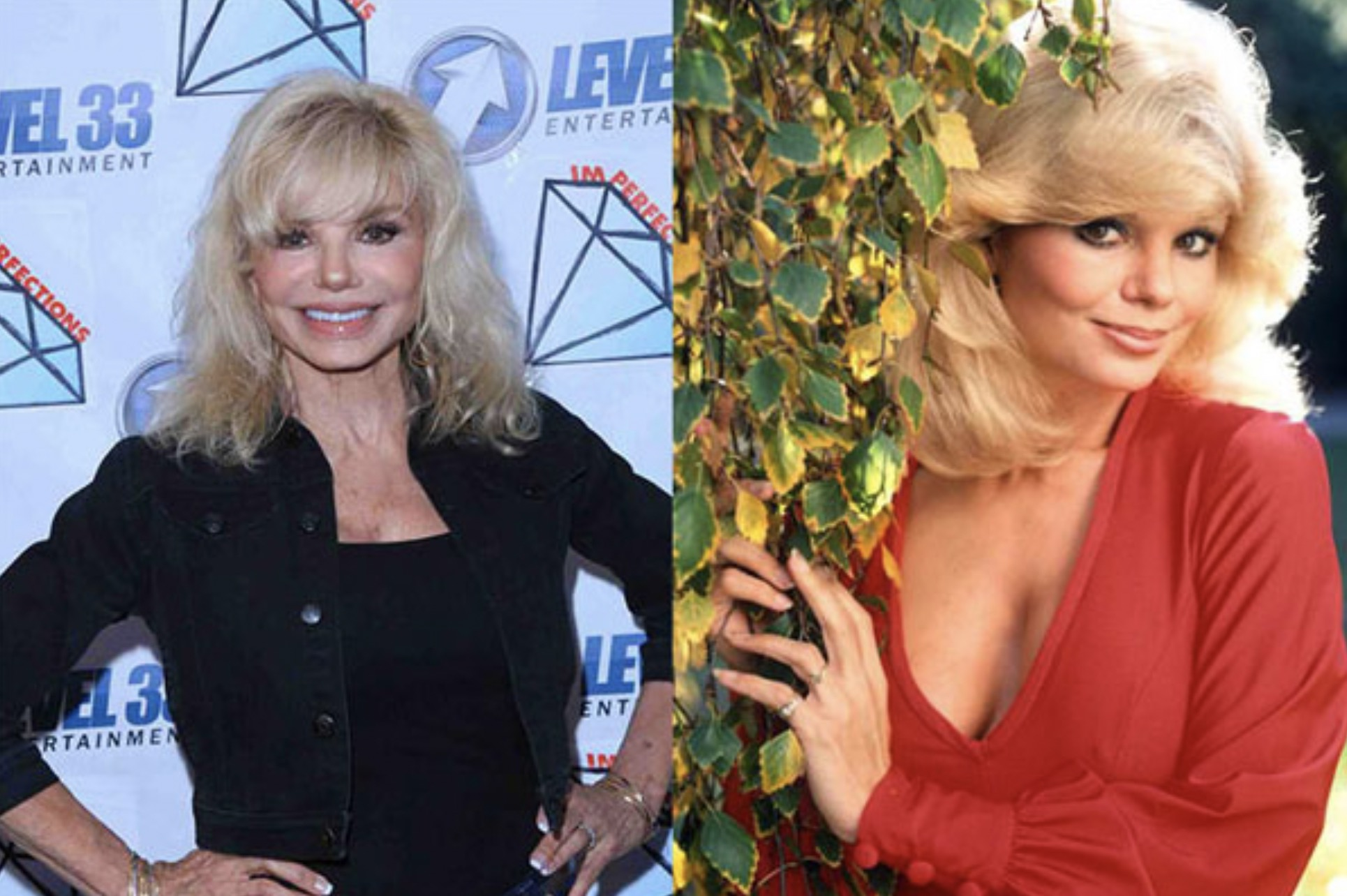 LONI ANDERSON 72 YEARS OLD