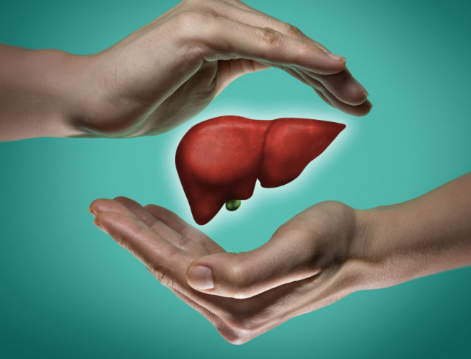 Provide Liver Protection